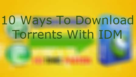download-torrents-with-idm.