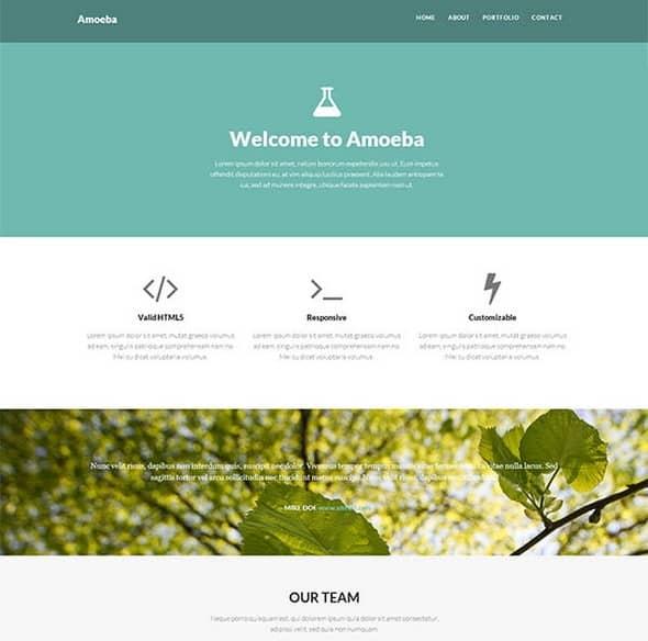 Amoeba-onepage ccs template